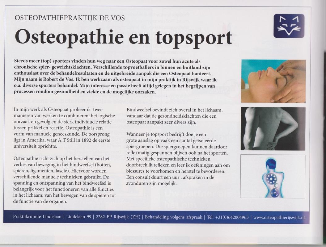 kranten artikel door Robert de Vos