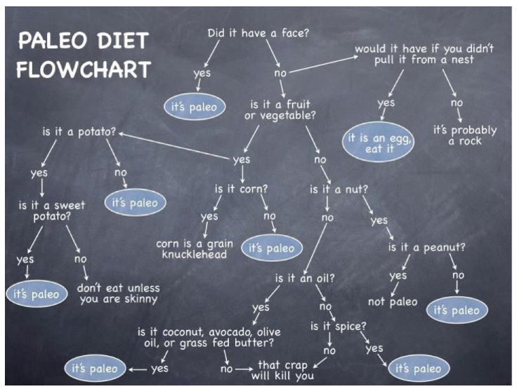 paleo dieet flowchart
