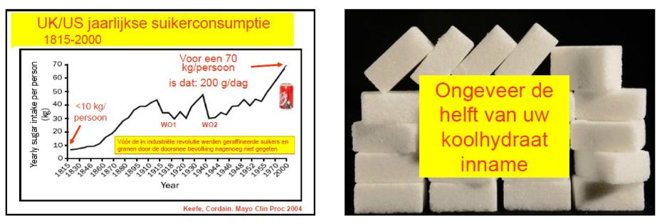 jaarlijkse suikerconsumptio in VK en VS