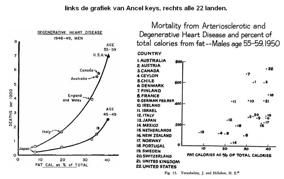 grafiek met uitkomsten van Ancel Keys
